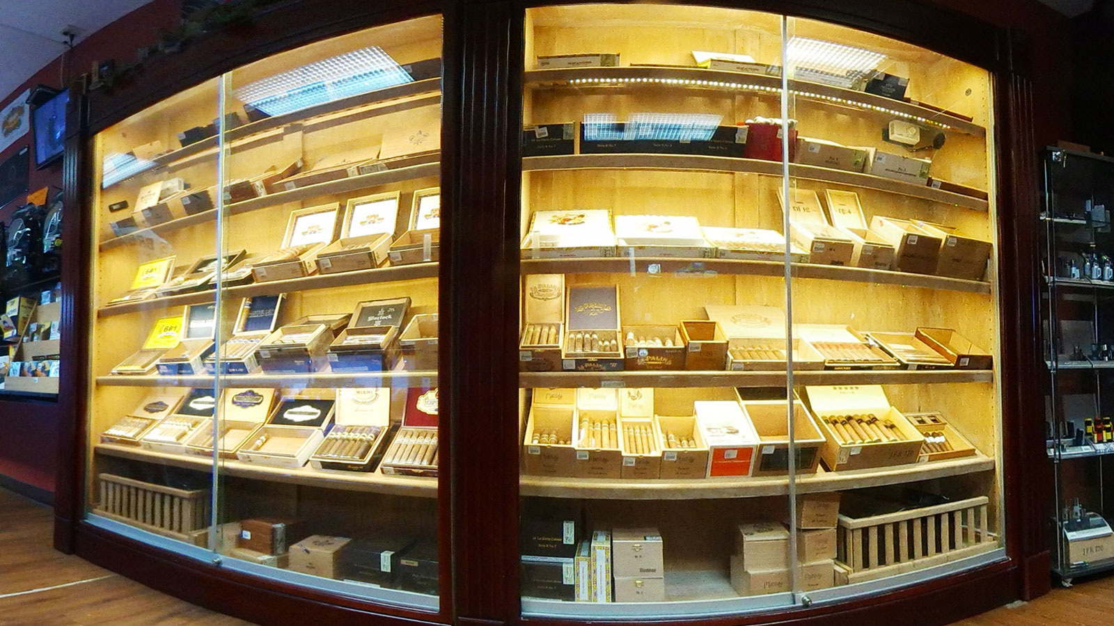Assortment of Cigars in Cigar Humidor